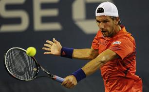 Jürgen Melzer Tennis