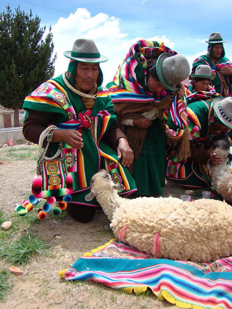 : Rund um den Dreikönigstag werden vor der Kirche von San Pedro de Totora zwei Schafe geschlachtet als Opfergabe an die Pachamama