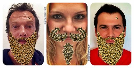 Robert Kratky, Lisa Hotwagner und Sigi Fink mit Bienenbart - bienens.5373832