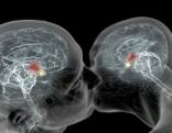 Das automatische Gehirn: Die Magie des Unbewussten 1/2
