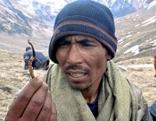 Das Gold des Himalaya