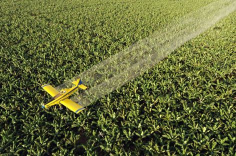 Flugzeug versprüht Pestizide