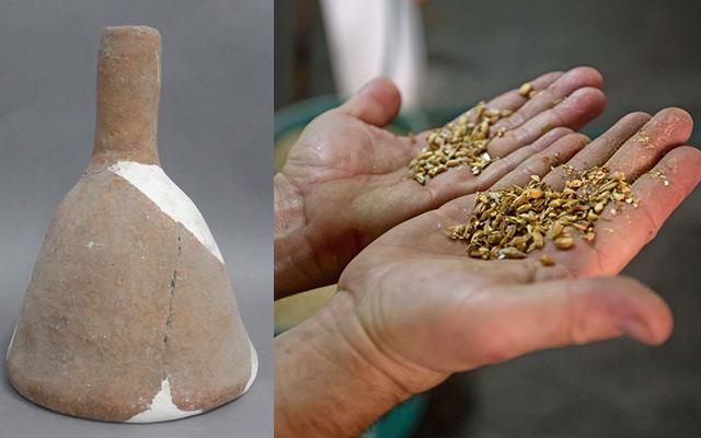 Historisches Tongefäß und Gerstenkörner in der Hand eines Mannes