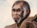 """Künstlerische Darstellung: So könnte der """"Hobbit"""" Homo floresiensis ausgesehen haben"""