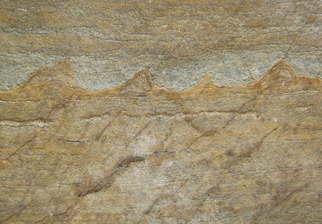 Verräterische Linie in Urgestein: Die ältesten Fossilien der Welt?