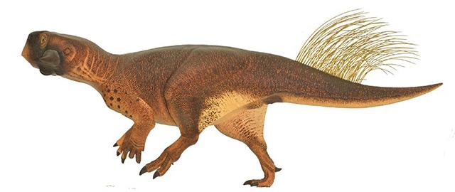 Rekonstruktion Psittacosaurus