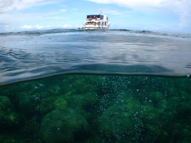 Kohlendioxid-Austrittsstelle im Riff von Milne Bay Provinz, Papua Neuguinea