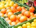 Grapefruits, Zitronen und Orangen auf einem Marktstand