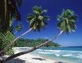 Palmen, weißer Strand und blaues Meer auf der Seychelleninsel Mahe