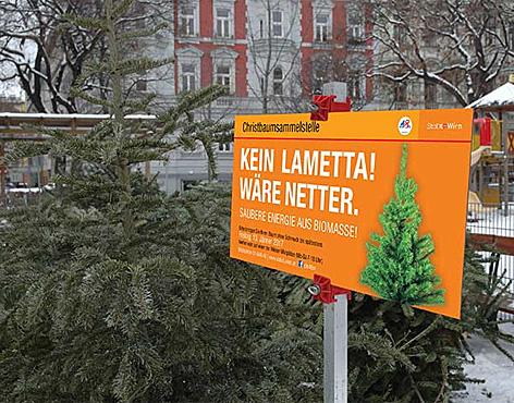 Christbäume an einer Sammelstelle in Wien