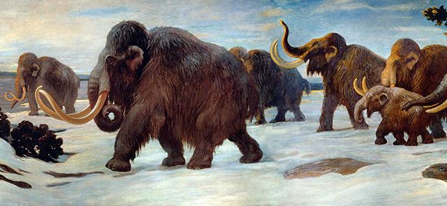 Künstlerische Darstellung: Mammuts im Schnee