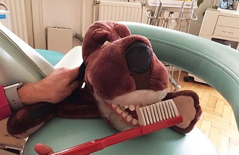 ein Spielzeughund mit großen Zähnen und eine Riesenzahnbürste
