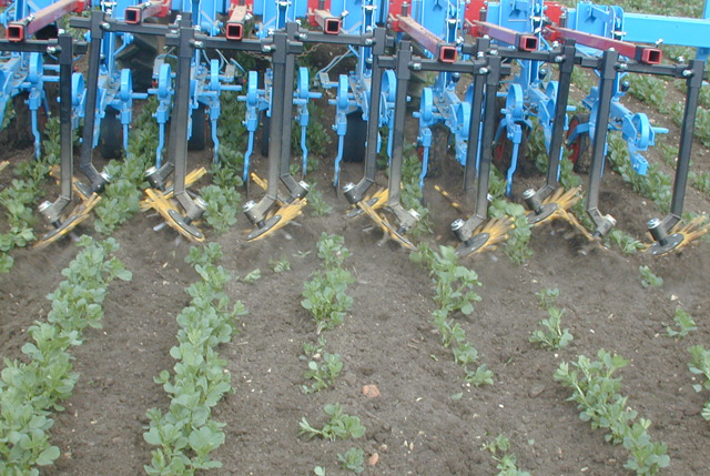 Mechanische Bodenbearbeitung