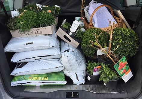 Säcke mit Blumenerde und Pflanzen im Kofferraum eines Autos