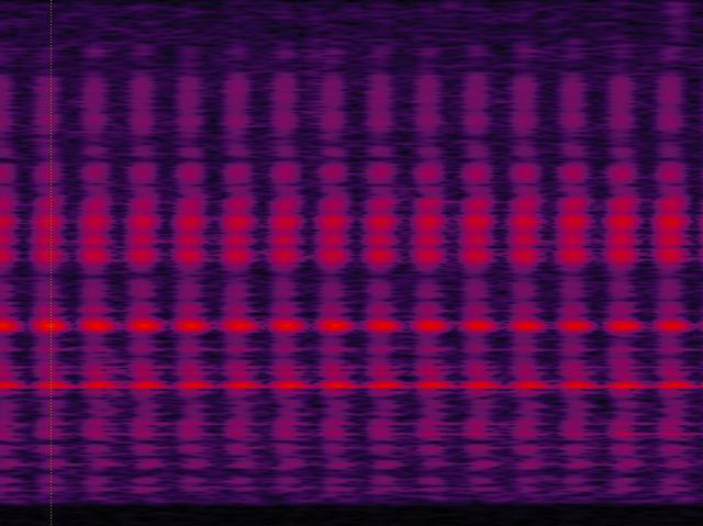 Frequenzanalyse (Sonagramm) der Lautimpulse bei der Photosynthese einer Wasserpflanze (Elodea canadensis).