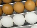 Braune und weiße Eier