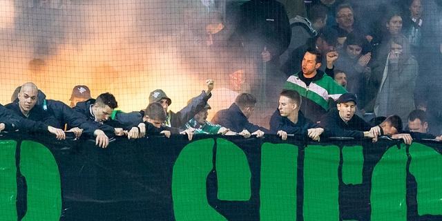 Rapid Fans