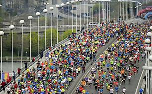 Das Teilnehmerfeld des  Vienna City Marathons