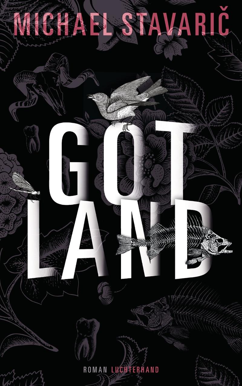 """Michael Stavarič, """"Gotland"""", Luchterhand Literaturverlag, München 2017"""
