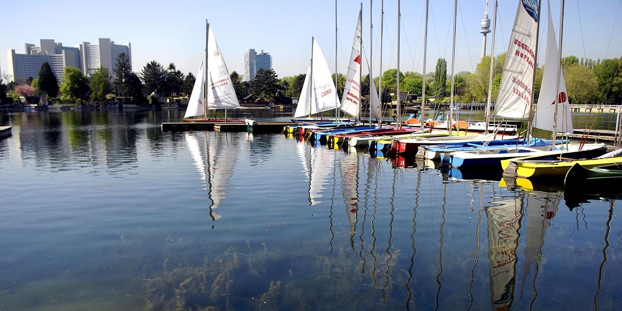 Donau Algen