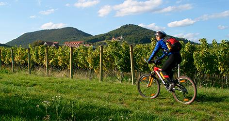 Mann am Fahrrad