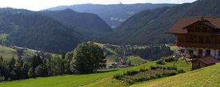 Blick auf die Gemeinde Forstau