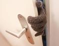 Eine Person, die dunkle Handschuhe trägt, schleicht sich in eine Wohnung