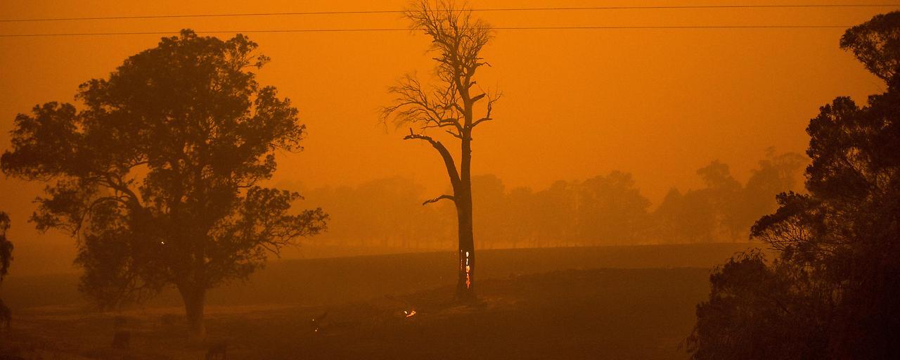 IPCC sieht dringenden Handlungsbedarf