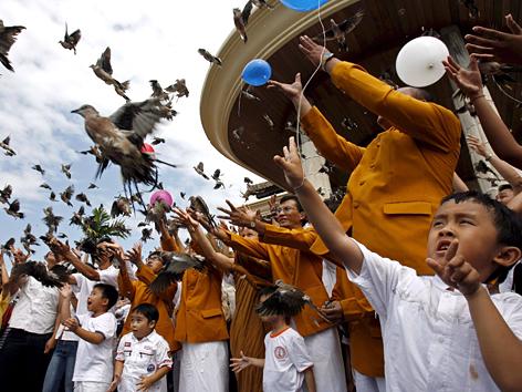 Vögel werden auf Bali anlässlich des Vesakh-Festes freigelassen