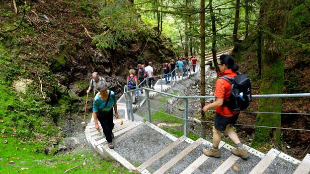 Wanderweg zwischen der Rappenlochschlucht und der Alplochschlucht im Bregenzerwald bei Guetle