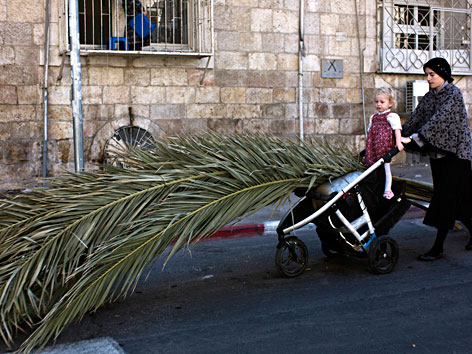 Eine orthodoxe Jüdin transportiert Palmwedel für die Laubhütte in einem Kinderwagen