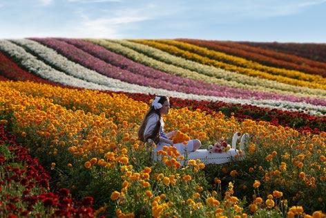 Ein Mädchen sitzt auf einem Sessel in einem Feld mit bunten Blumen