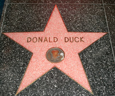 Donald Ducks Stern am Walk of Fame
