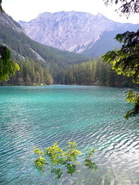Mariazeller Land - Geheimnisvolle Bergwelt zwischen Ötscher und Hochschwab
