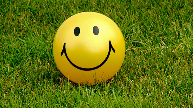 Smiley im Gras