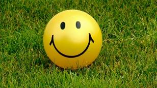 Smiley im Gras