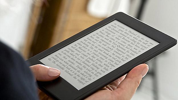 Statistik über eBook Nachteile