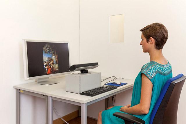 Labor: Frau sitzt vor einem Tisch und betrachtet ein Gemälde auf einem Computer-Bildschirm