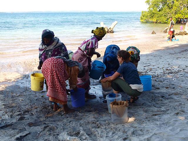 Graben nach Sedimenten an der afrikanischen Küste