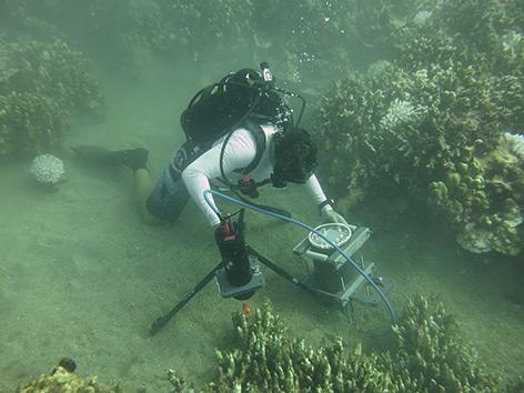 Forscher im Meer mit Unterwassermikroskop