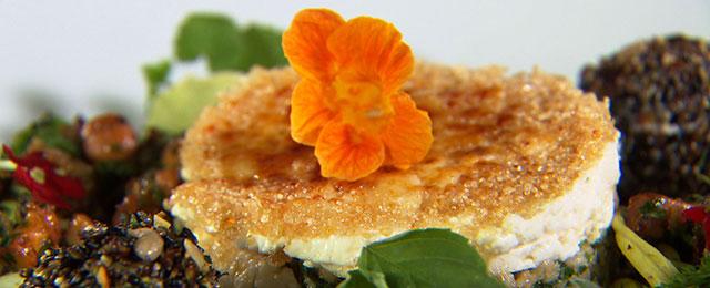 Kräutersalat mit karamellisiertem Ziegenkäse