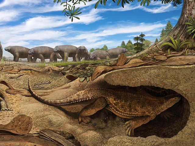 Rekonstruktion der frühen Proto-Schildkröte Eunotosaurus