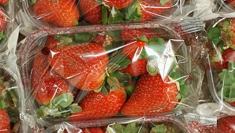 Erdbeeren in Plastik