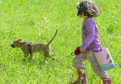 Ein Kind mit Hund auf grüner Wiese