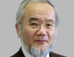 Yoshinori Ohsumi, Nobelpreisträger für Medizin 2016