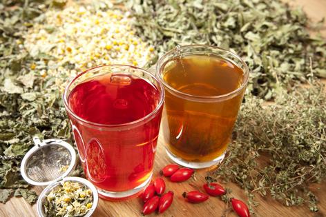 Tee Mehr Als Nur Heißes Wasser Guten Morgen österreich