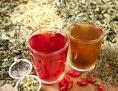 Zwei Tassen mit Kräuter-Tee und getrockneten Heilkräutern