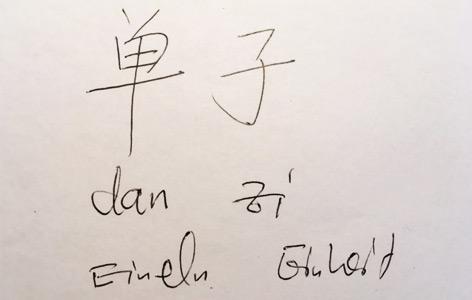 """Chinesischer Schriftzug von """"Monade"""""""
