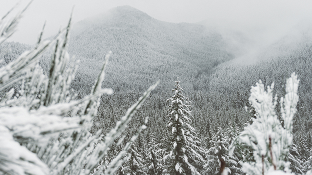 leise, es schneit