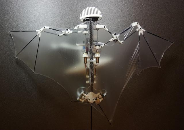 BatBot Flugroboter